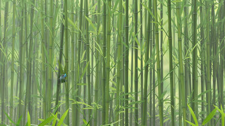 Bamboo Butterfly