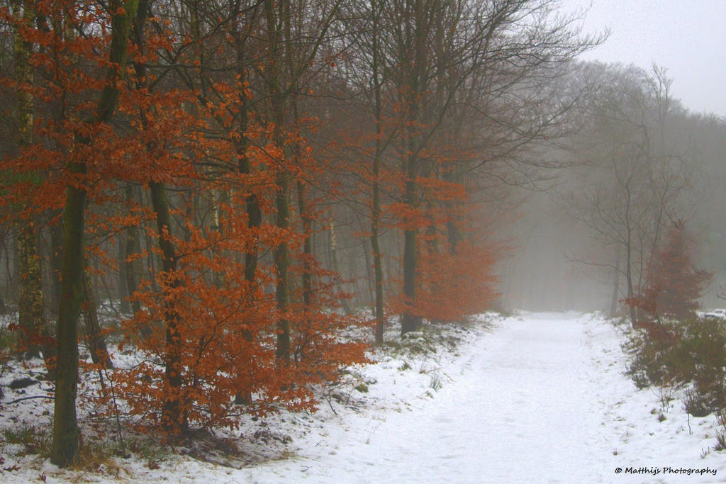 Snowfall by MatthijsPhoto