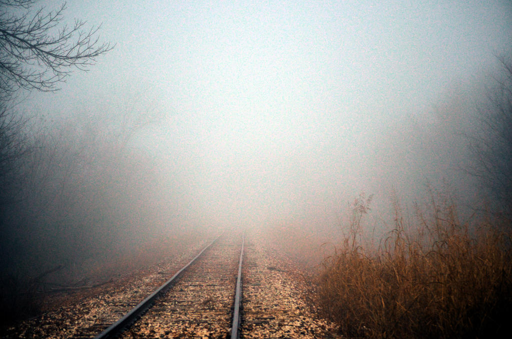 Tracks in the morning fog by AtomicFireball33