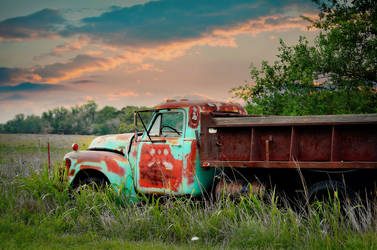Put out to pasture by AtomicFireball33