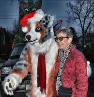 Williamston Light Parade 2012 lineup by Tychoaussie
