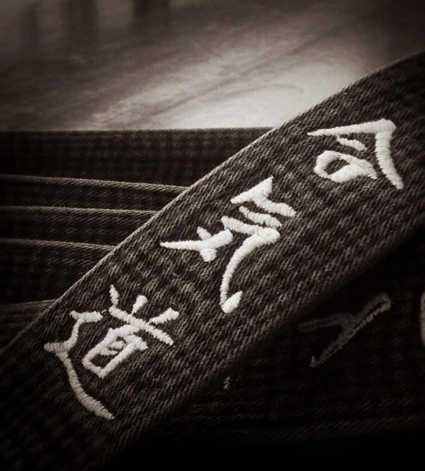 Image result for blackbelt aikido