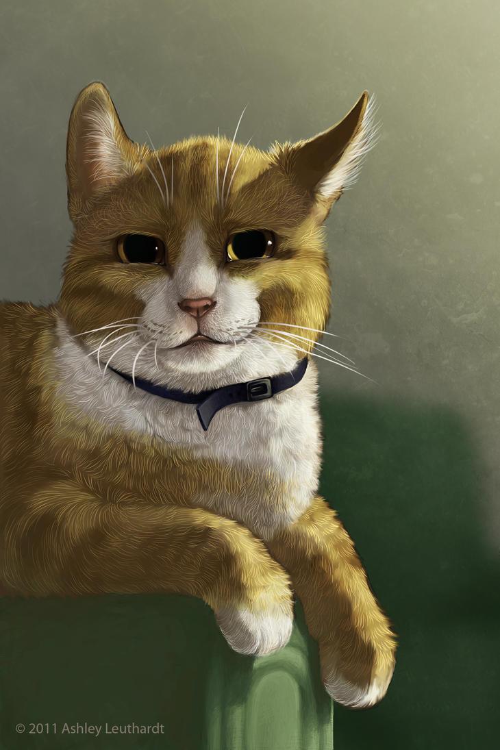 Gatto by katanimate