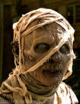 Mummy 2003