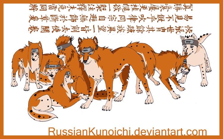 http://fc02.deviantart.net/fs31/f/2008/190/1/c/Seven_path_of_Pein_by_RussianKunoichi.jpg