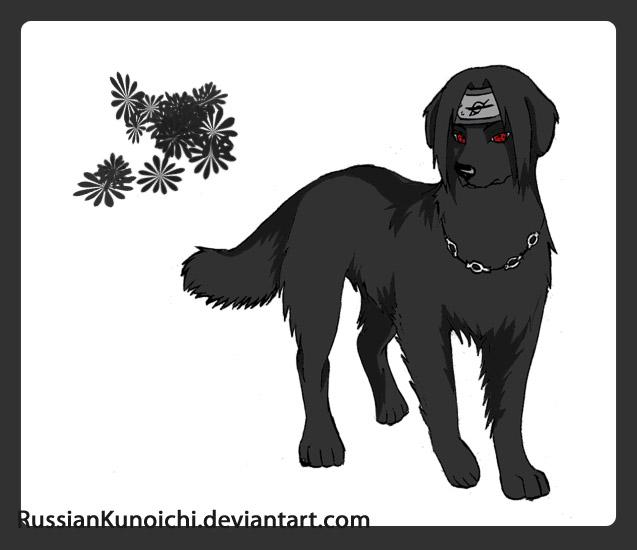 http://fc60.deviantart.com/fs36/f/2008/247/5/9/Itachi___dog_style_by_RussianKunoichi.jpg