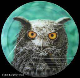 Radabdeckung Uhu - 2009 (Wheel cover with eagle ow