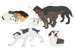 Attack on Titan Dogs Dump5