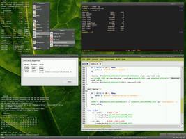 FreeBSD 6.2 + Fluxbox by vermaden