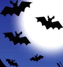 Halloween png 4 by SariSmiler on DeviantArt
