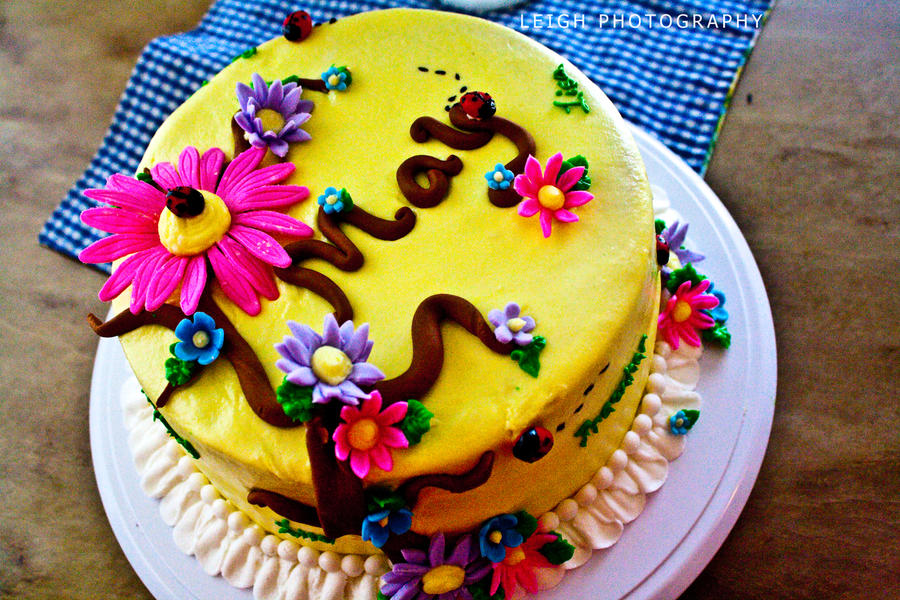 Spring Birthday Cake 2 By The Minds View On Deviantart