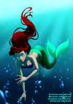 Ariel   The Little Mermeid   Fanart