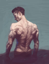Photo Study - Back Muscles