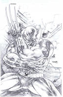 Wolverine Commission