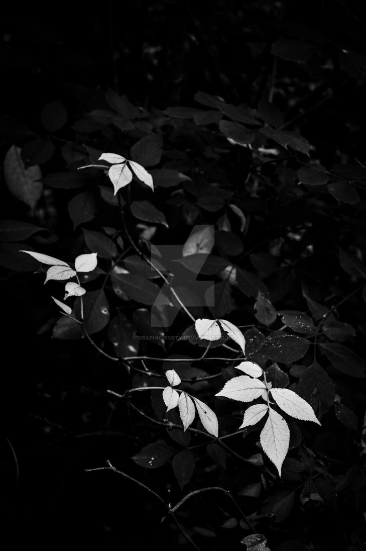 White Leaves by graphic-rusty