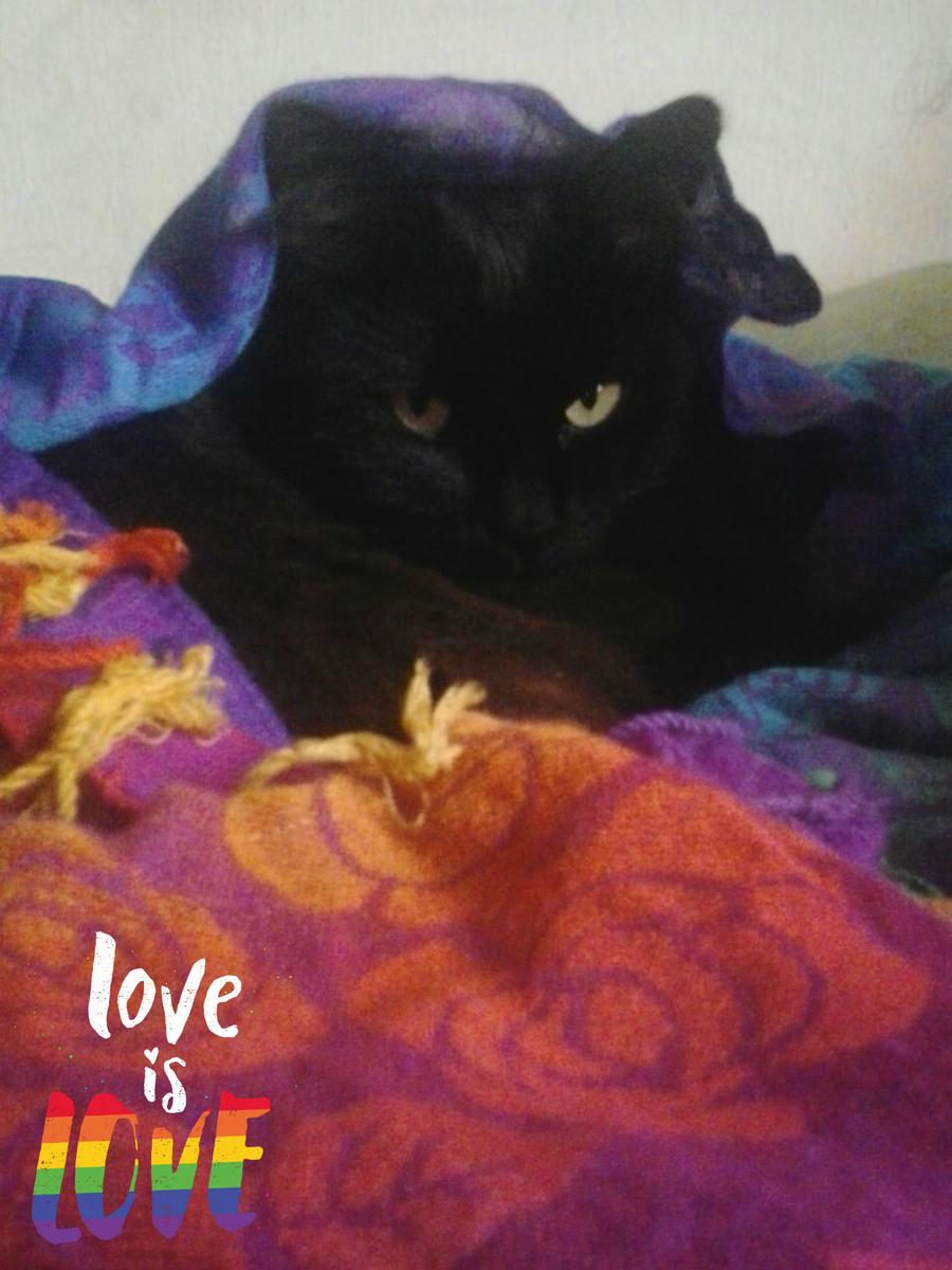-+Love is Love+- by ushirin