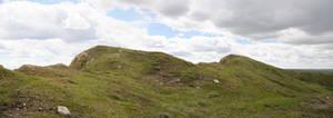 Grassland Panorama