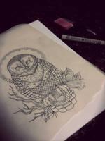 Barn Owl sketch by Atropina-Belladonna