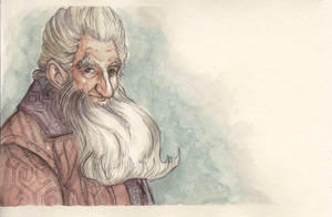 Balin son of Fundin, Lord of Moria by citrus-slice