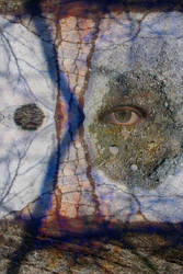 Emotional Disfiguration