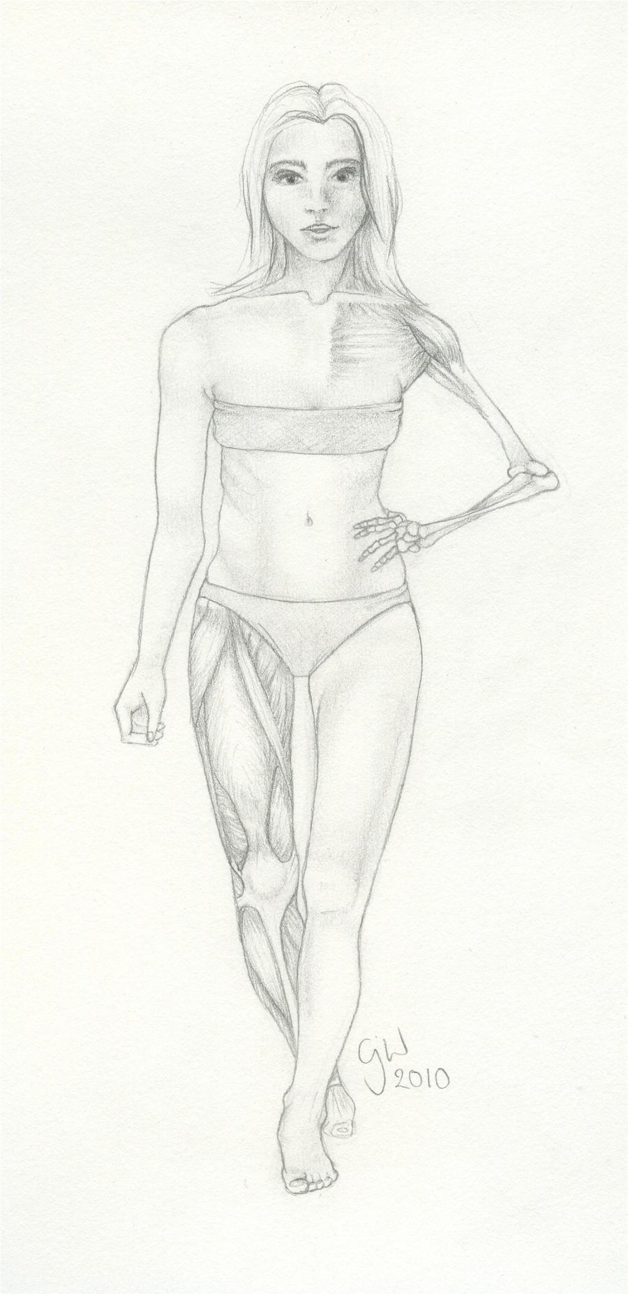 Skin, Muscle and Bone II by nenetophni