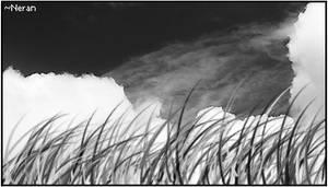 Cloud 'n Grass