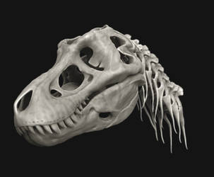 T rex scull and skeleton wip by damir-g-martin