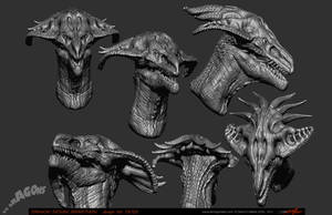 Dragon 19