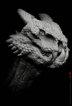 Dragon design 16