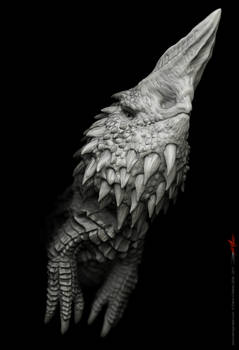 Dragon design 17
