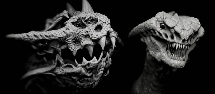 sitback dragon 7