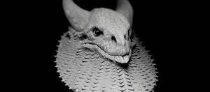 sitback dragon 11