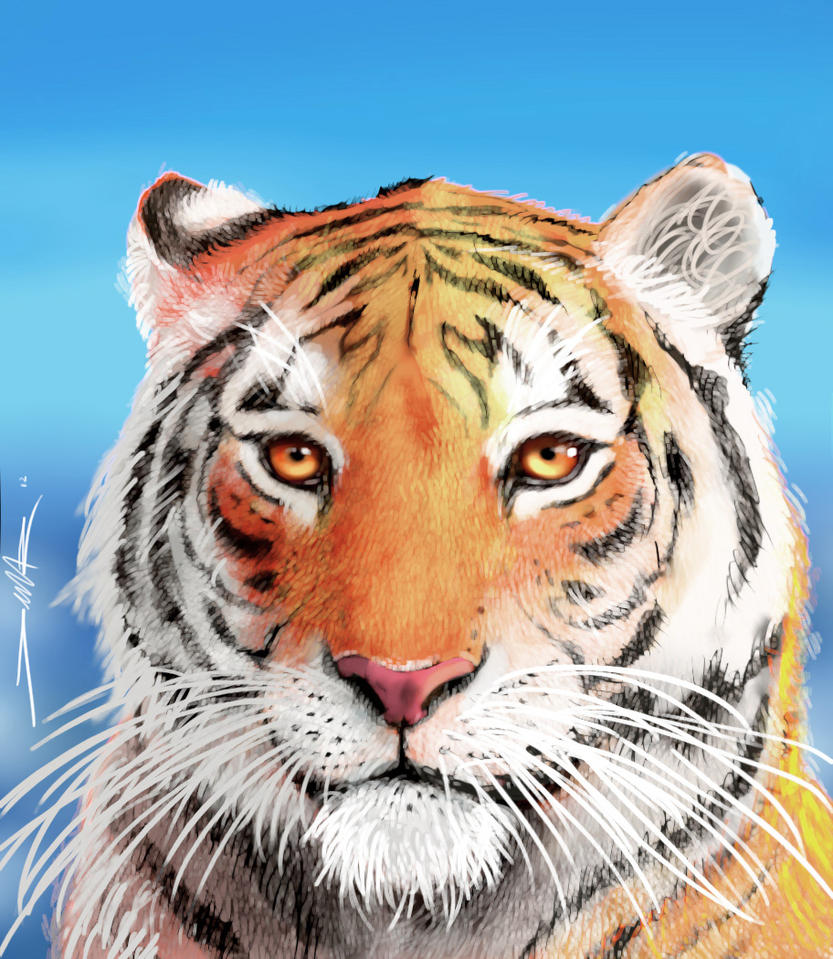 Richard parker by damir g martin on deviantart for Life of pi movie analysis