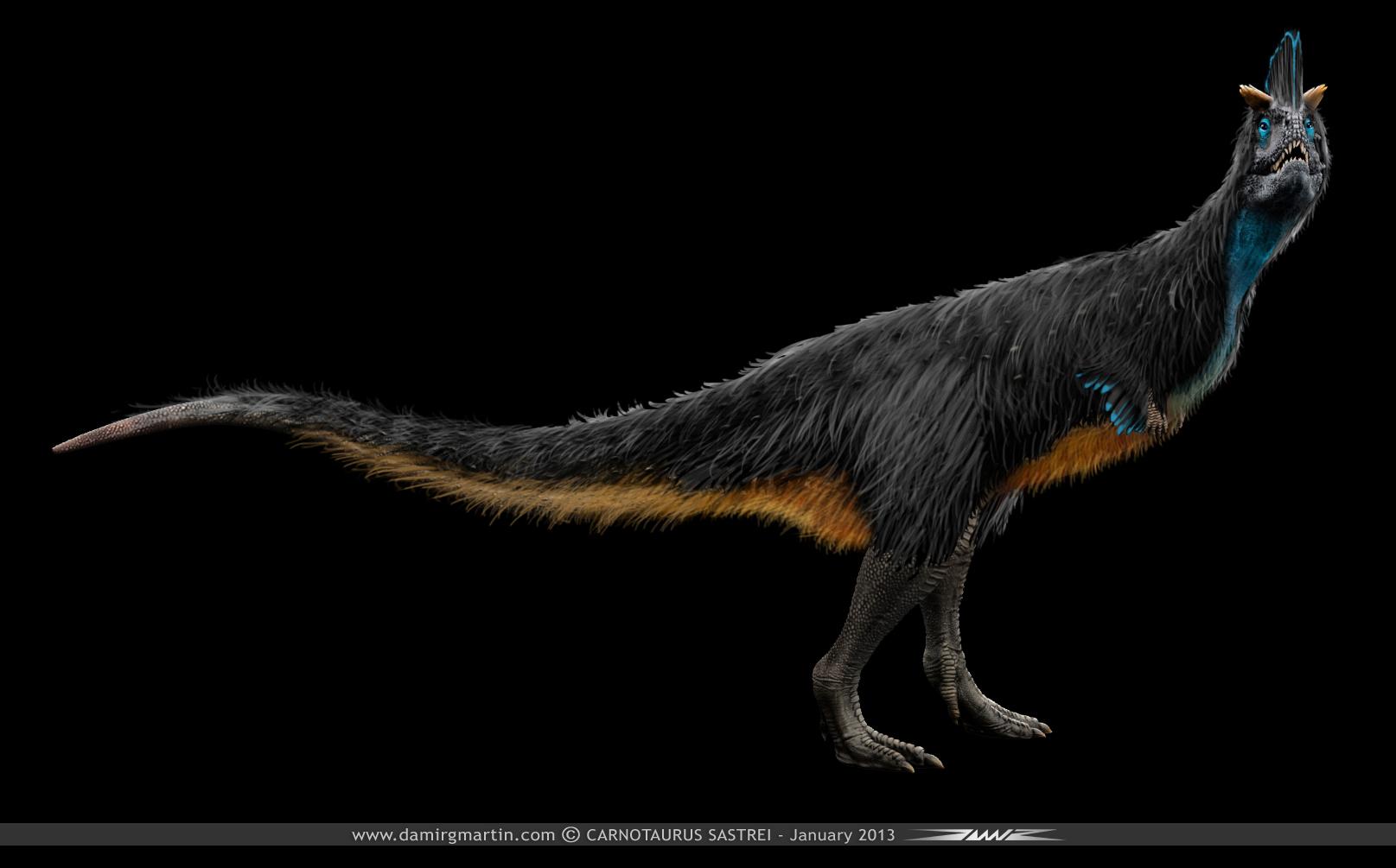 Carnotaurus Sastrei with feathers