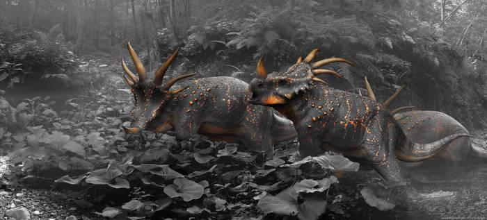 Styracosaurus B n' W