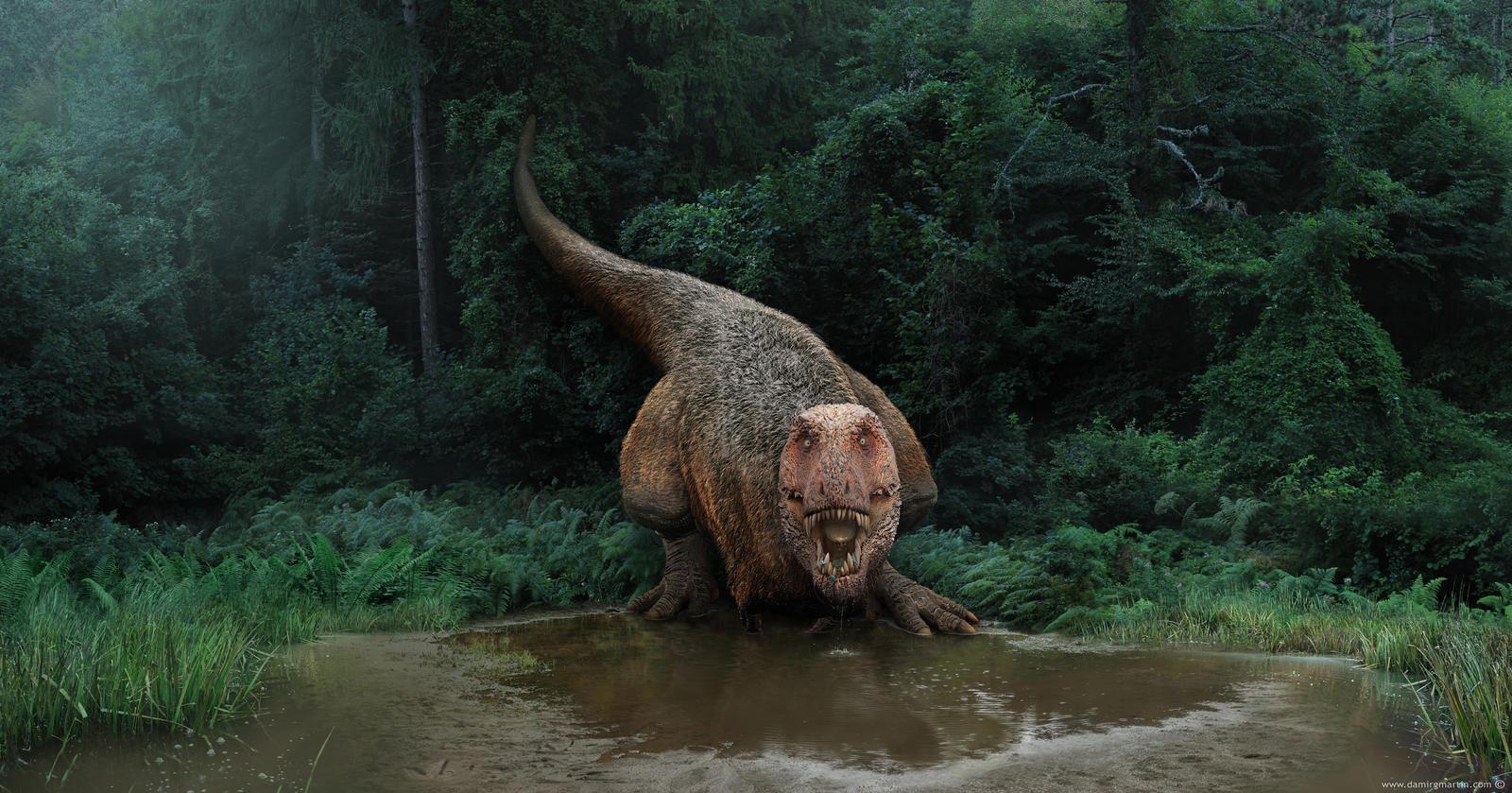 tyrannosaurus_on_a_watering_hole_by_damir_g_martin-dane4wn.jpg
