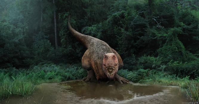 Tyrannosaurus on a watering hole