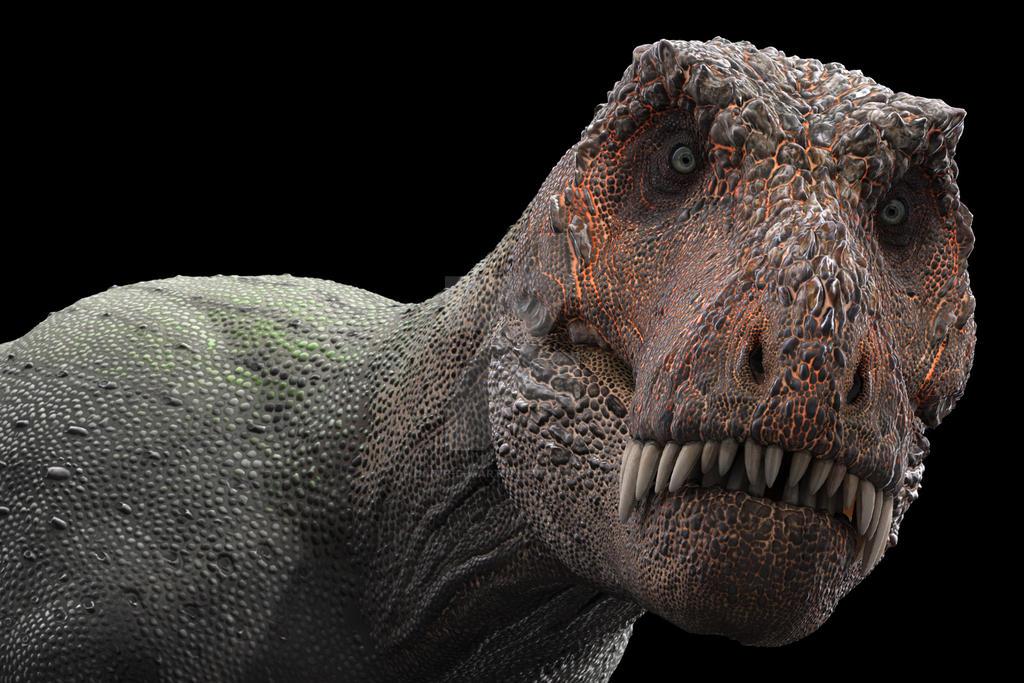 T Rex by damir-g-martin