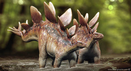Stegosaurus couple