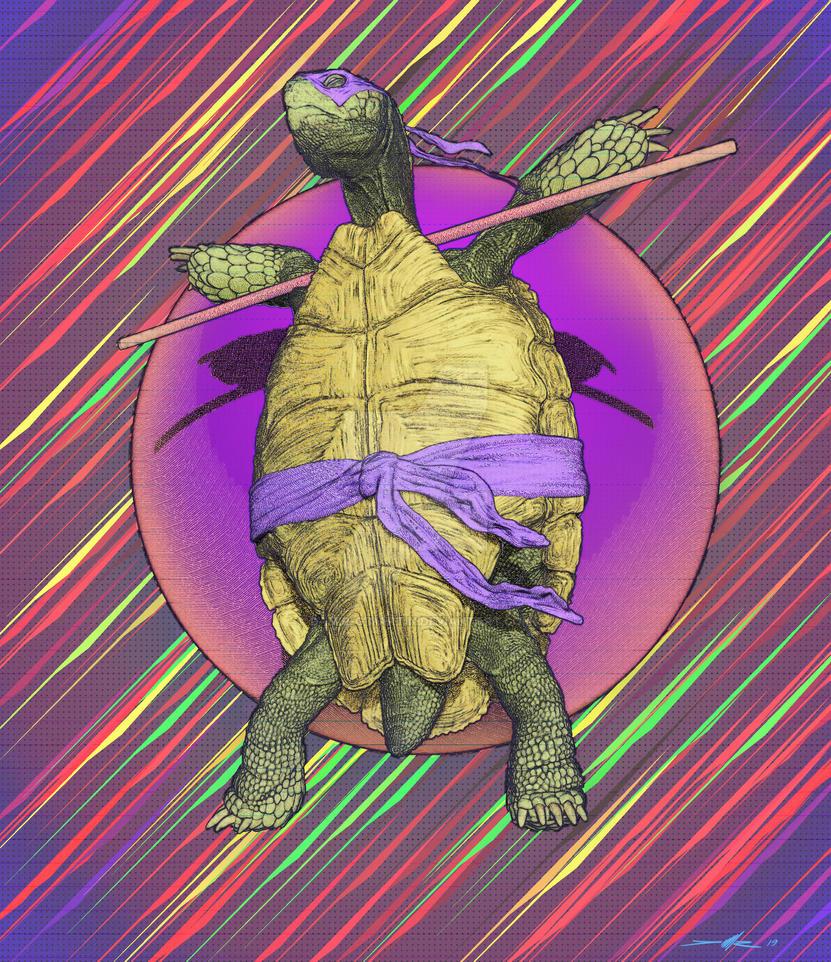 Real Ninja Turtle by damir-g-martin