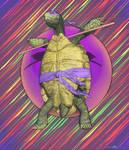 Real Ninja Turtle