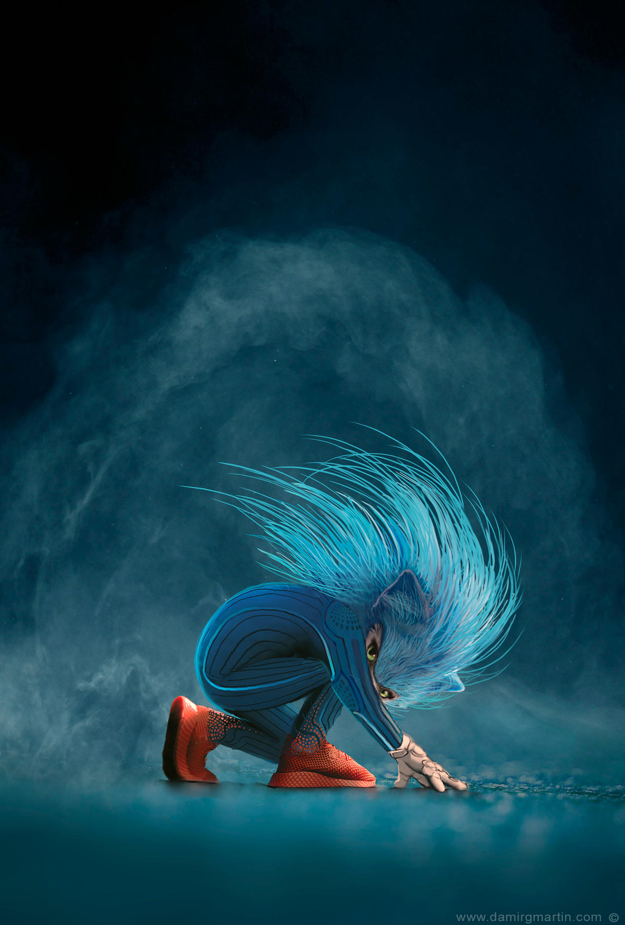 Sonic concept