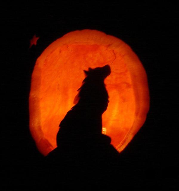 Halloween pumpkin wolf carving by amaryllishakatri on