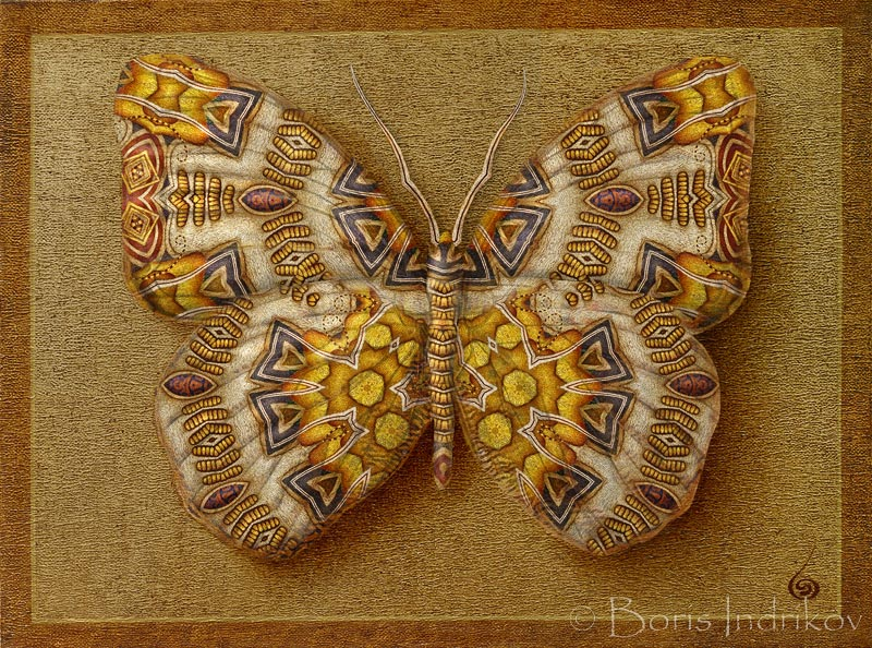 Symbol-Butterfly 11 by INDRIKoff