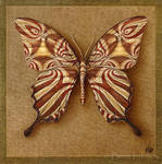 Symbol-Butterfly 4