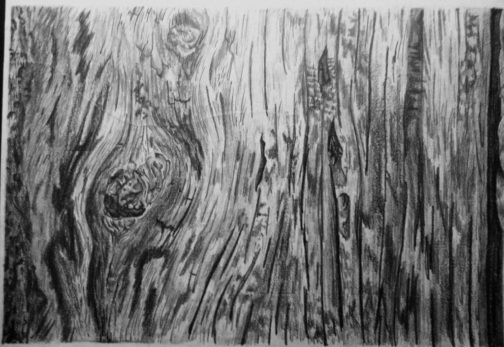 wood drawing by bobbosce on deviantart