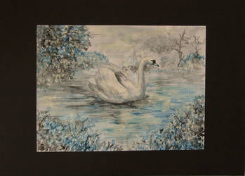 Swan aquarelle by SalazarinaSlytherin