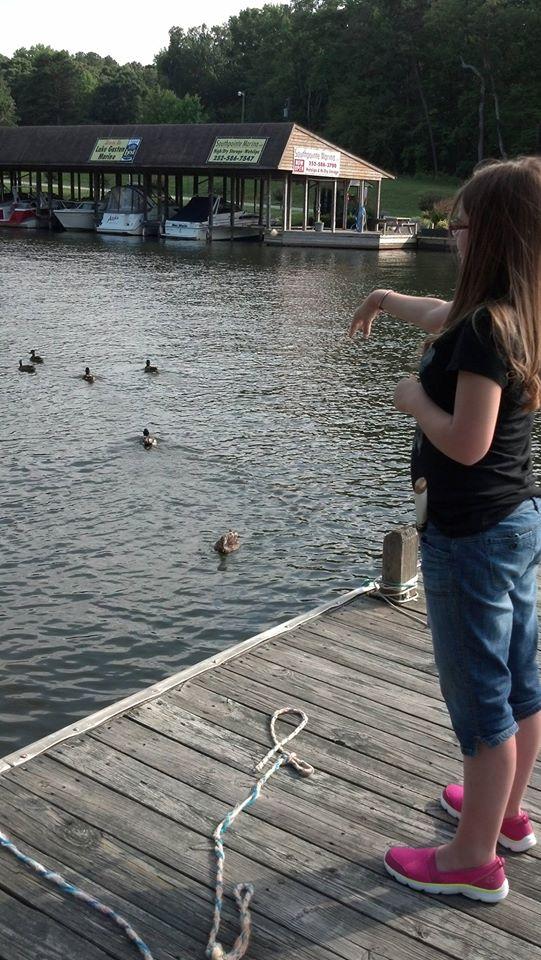 Feeding the ducks at lake gaston north carolina by for Lake gaston fishing