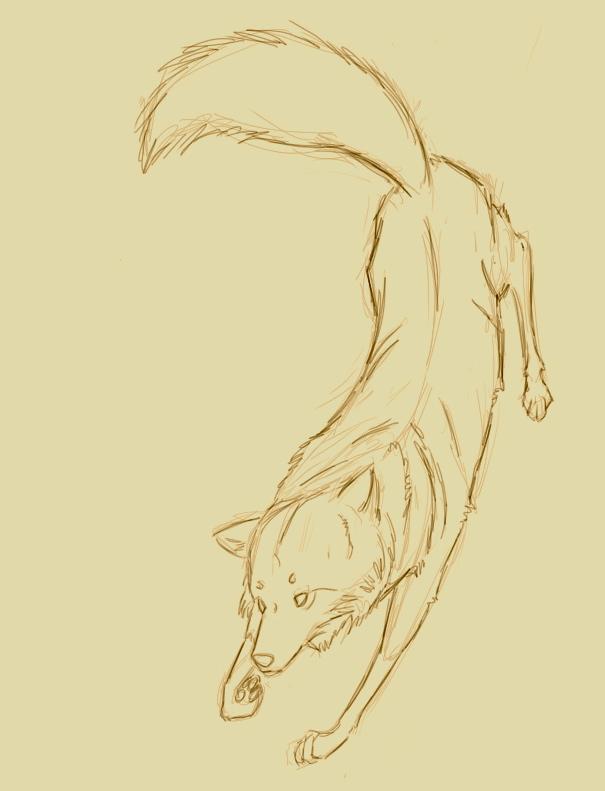 wolf by StardogChampion94