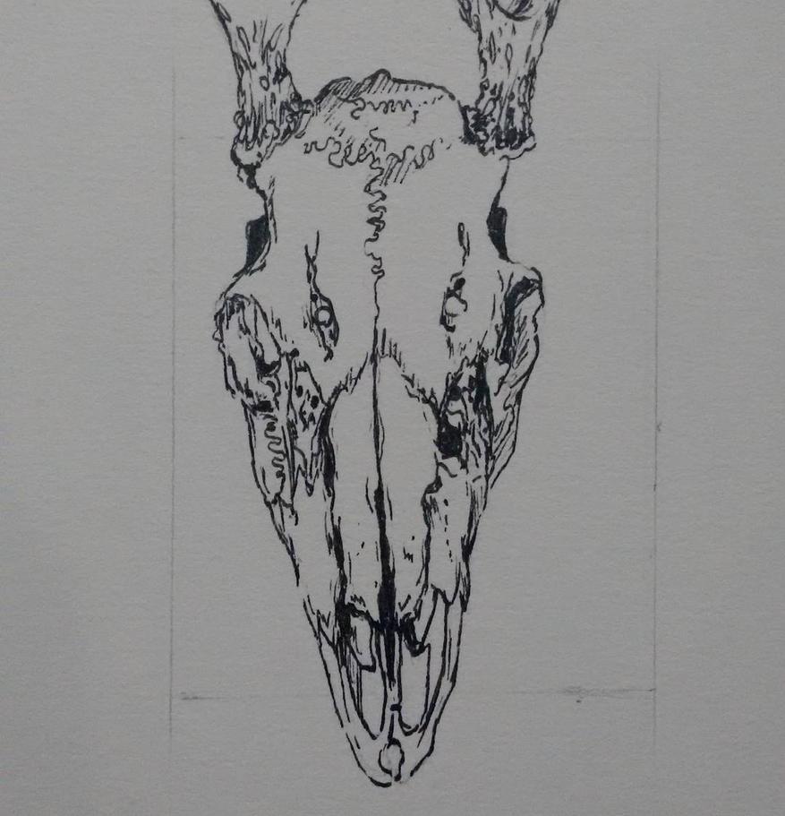 Cervoo by INeedMyMedic